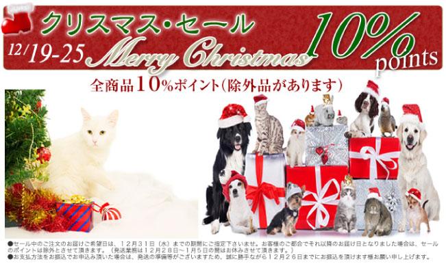 クリスマスセール対象商品 10%ポイント!